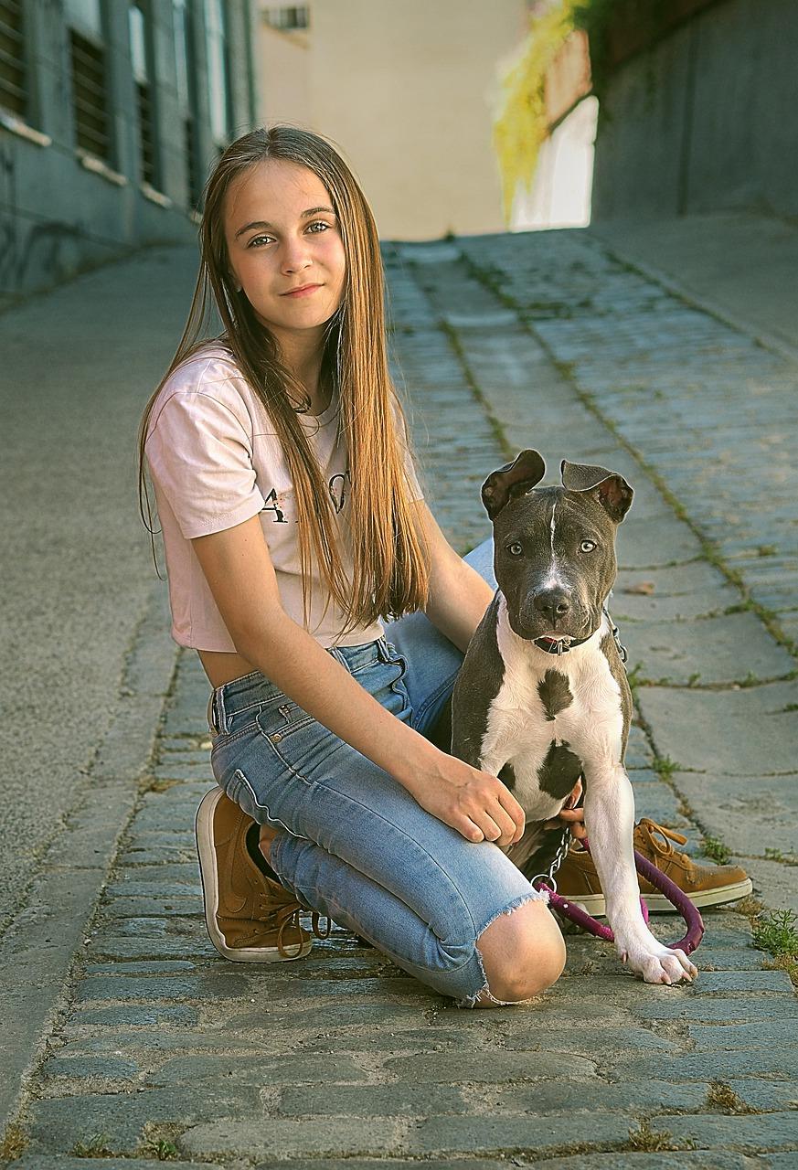 Koirat Kotia Vailla